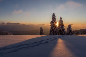 winter-3028615_960_720